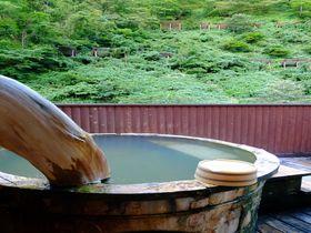 石川・白山の麓に佇む秘湯の宿!中宮温泉「にしやま旅館」|石川県|トラベルjp<たびねす>