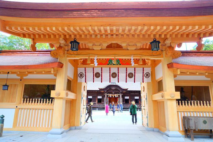 総ヒノキ作りの温かみある総門