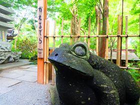 かえるパワー炸裂!福岡・小郡の通称「かえる寺」の如意輪寺はまさにかえる天国