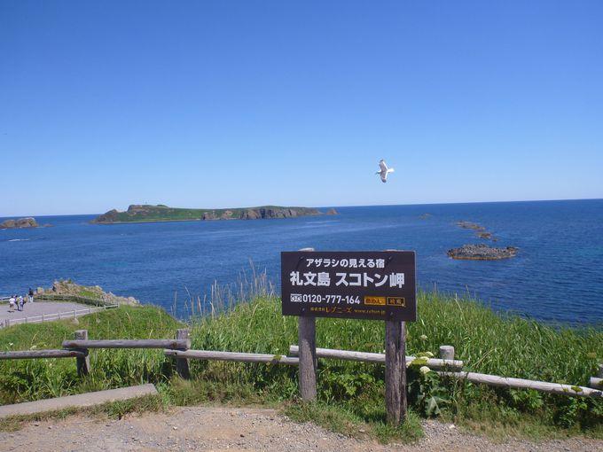 サハリンが見える事もある!礼文島の最北端「スコトン岬」