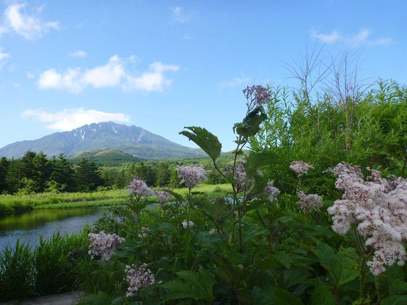 利尻島「白い恋人」のパッケージに使われた「オタトマリ沼」と逆さ富士が見られる「姫沼」の2つの沼を巡る