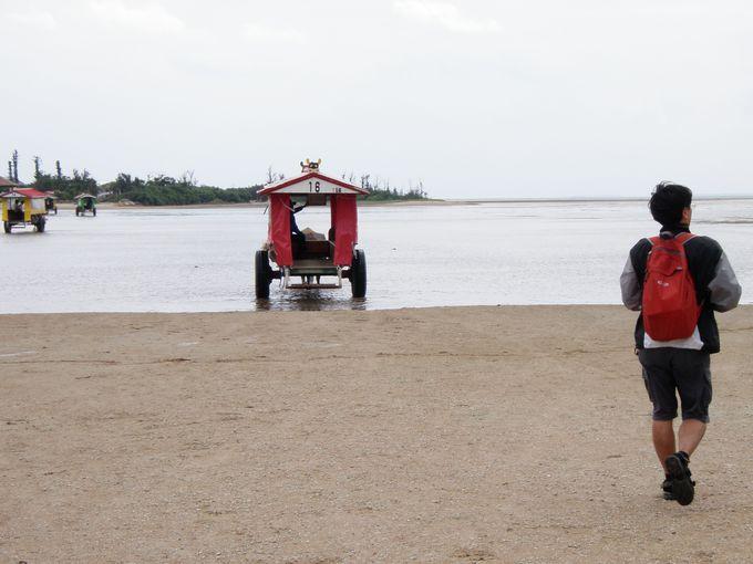 由布島の代名詞、「水牛車」