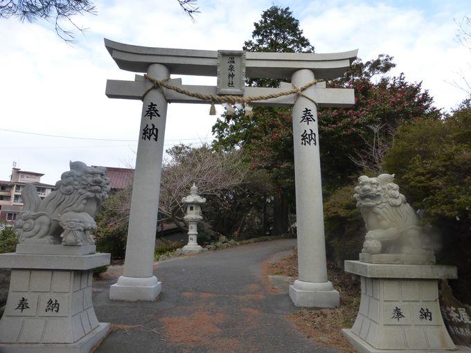 地獄巡りの後は温泉神社でお参りを。