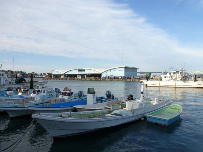 浜松が名産地の生しらすを「舞阪漁港」えんばい朝市で食す!