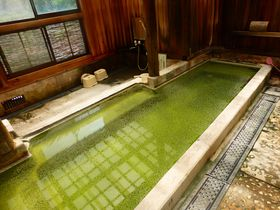 岩手の秘境・国見温泉「森山荘」は温泉通も唸るグリーンの湯が魅力|岩手県|トラベルjp<たびねす>