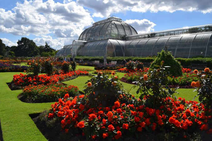 2. 王立植物園キューガーデン(イギリス)
