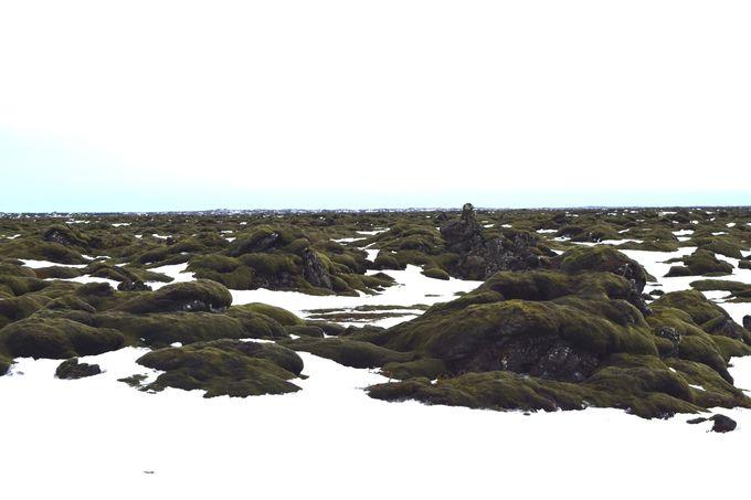 国道1号線でどこまでも続くアイスランドの大自然を満喫!