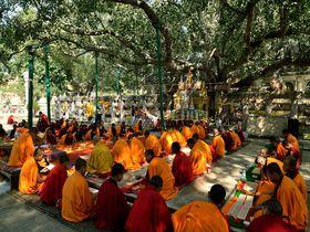 仏教発祥の地!世界遺産、ブッダ・ガヤのマハーボディ寺院は仏教最大の聖地!