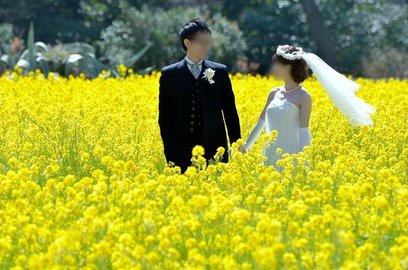 結婚写真の定番スポット!あなたも大切な記念日に是非!