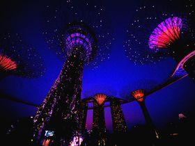 シンガポール夜景の新名所!ガーデンズ・バイ・ザ・ベイのライトアップが圧倒的に美しい!