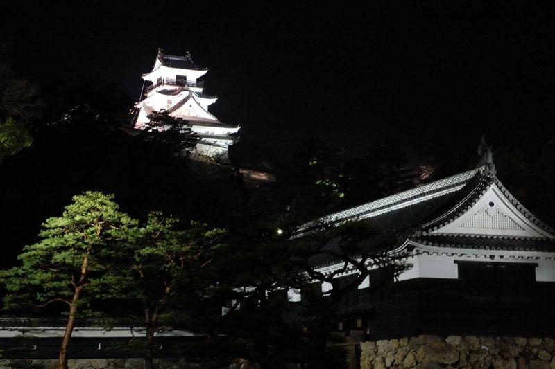 闇に浮かぶ高知城