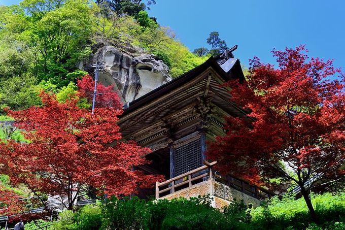 春紅葉の仁王門