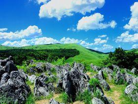 日本最大級のカルスト台地!秋吉台で大自然の造形美を堪能しよう!|山口県|トラベルjp<たびねす>