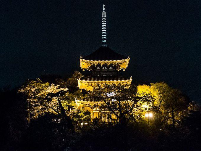 「関東最古の塔」もライトアップ