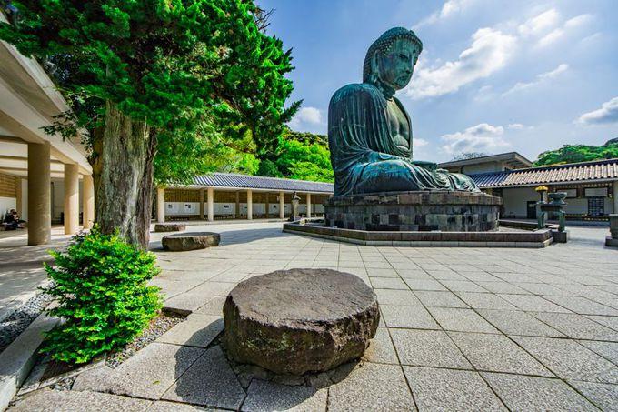 鎌倉・高徳院に残る大仏殿の「礎石」