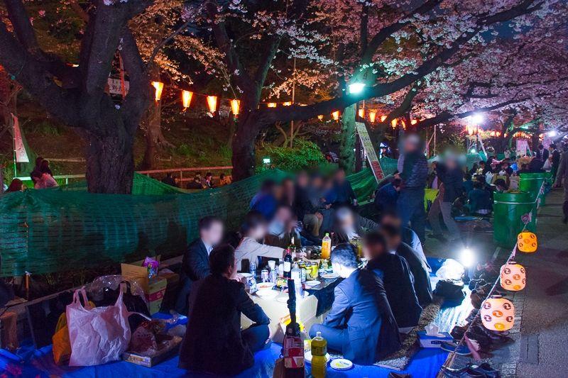 日本の花見文化の聖地!上野公園