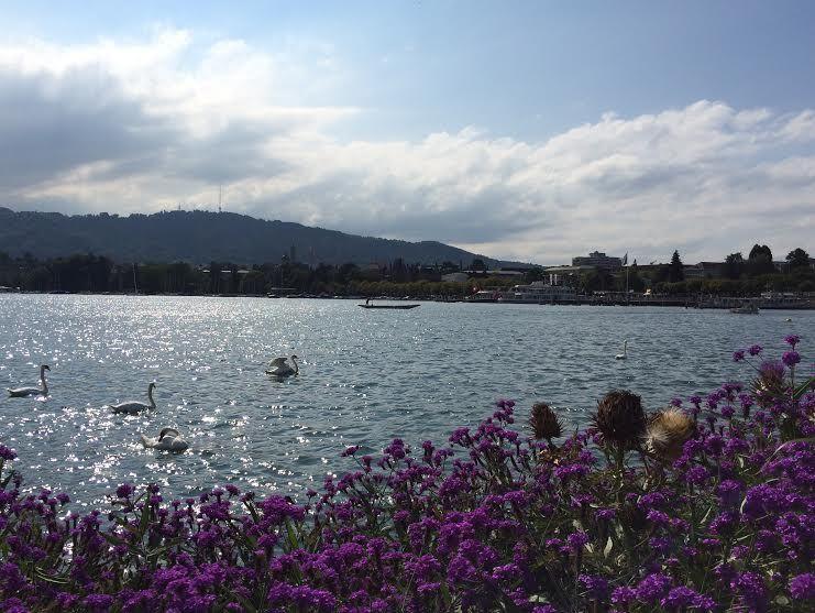 朝一番に訪れたいチューリヒ湖