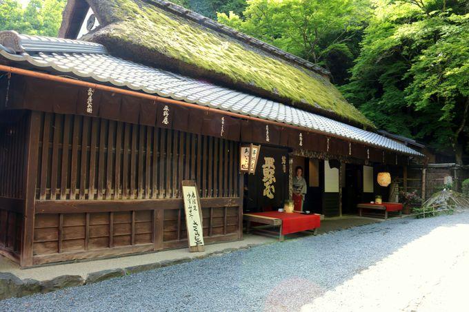 長い歴史を持つ鮎茶屋「平野屋」