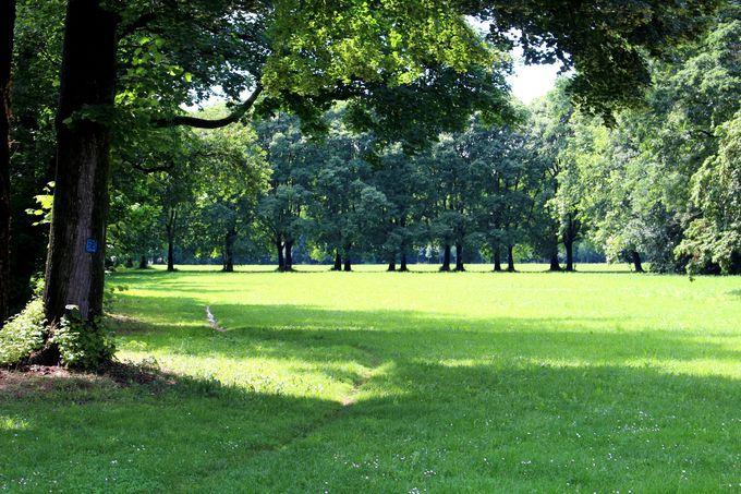 ヨーロッパ最大級!緑あふれるモンツァ公園