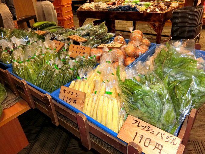「清里マルシェ」で新鮮な高原野菜を手に入れよう