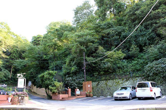 木々に隠された天空カフェ「樹ガーデン」
