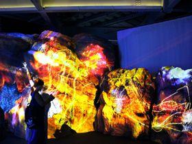 あなたも魚になれる!?新江ノ島水族館「ナイトワンダーアクアリウム2016」|神奈川県|トラベルjp<たびねす>