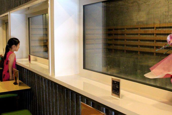 老舗氷卸商と料亭がコラボ!夏季限定オープン「クールハウス」