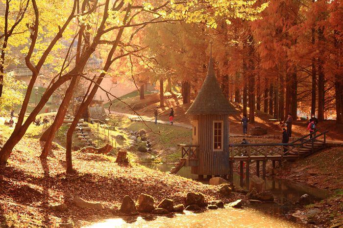 埼玉・飯能「トーベ・ヤンソンあけぼの子どもの森公園」が人気の5つの理由