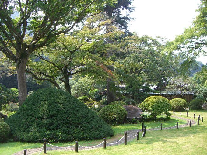 国登録有形文化財の旧岩崎家別邸を散策