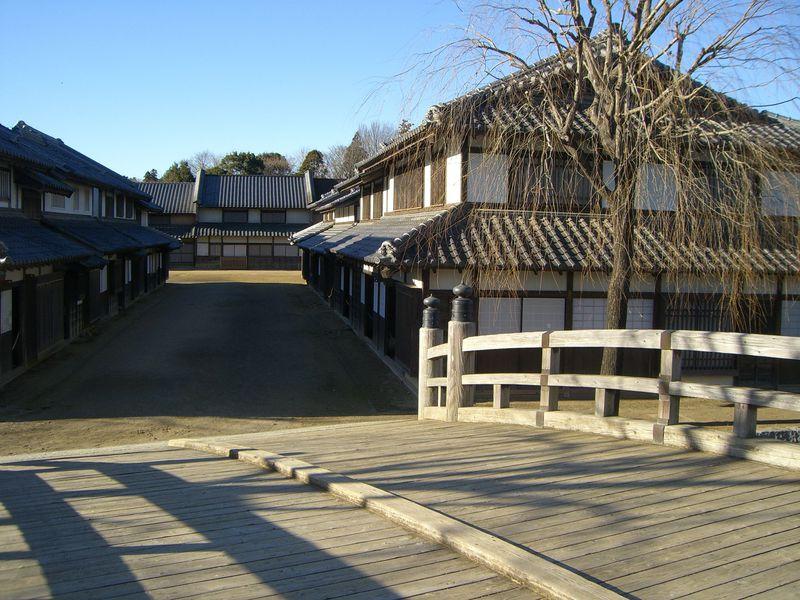 「八重の桜」の撮影場所はココ!茨城のロケスポット Best3