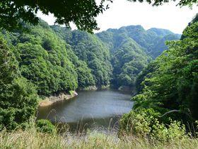 竜神峡でカヌー体験in茨城〜水上散歩でしか見られない景色!