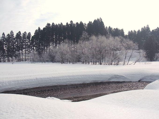朝早く起きたときの、とっておき「かた雪渡り」