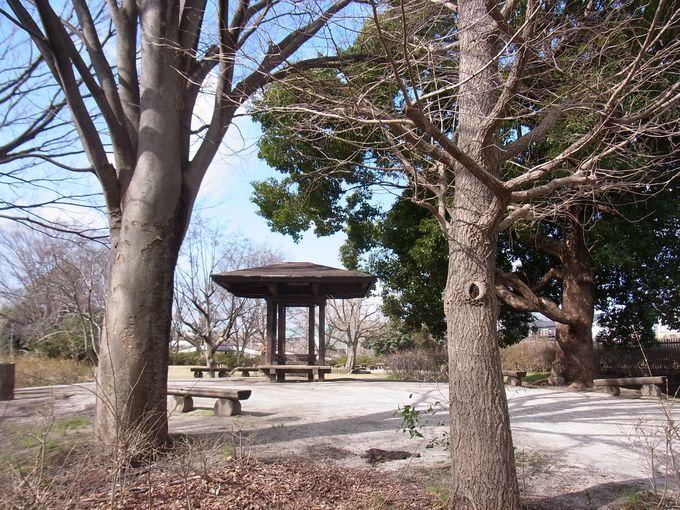 『下里本邑遺跡公園』を歩いて悠久のロマンを感じる!