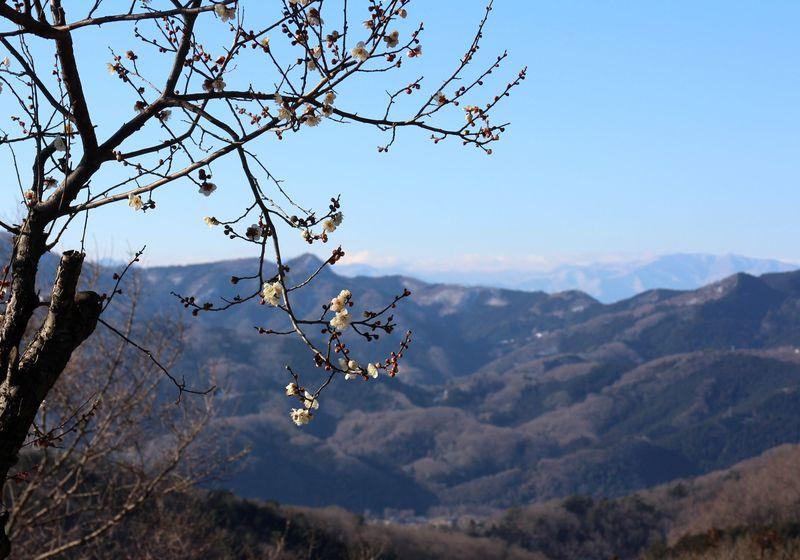 眺め良し!歩いて良し!埼玉・寄居 鐘撞堂山〜円良田湖ハイキング