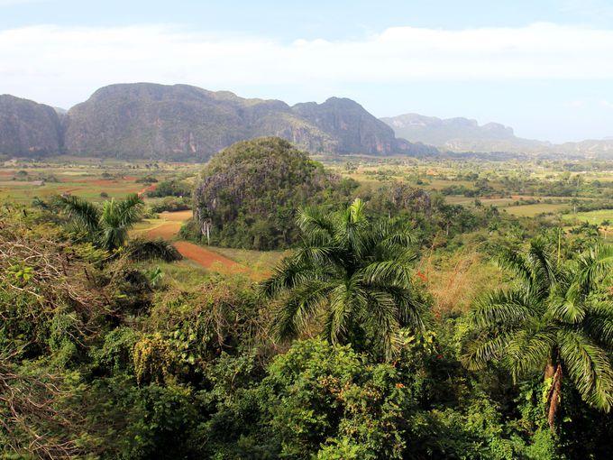 独特な景観に息をのむ!世界文化遺産のビニャーレス渓谷