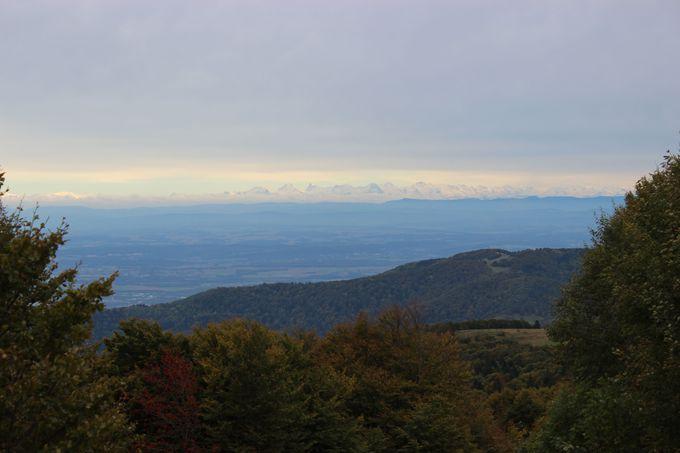 山頂から見晴らせるアルプス山脈
