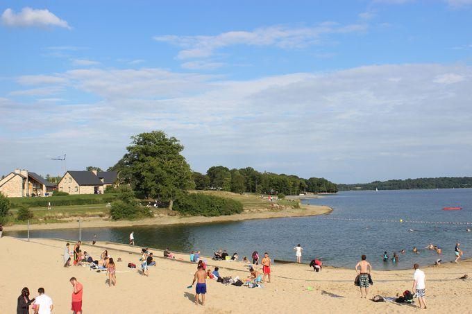 湖のビーチで日光浴はいかが?