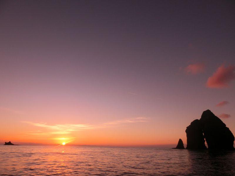 自然豊かな小笠原諸島の母島に行こう!