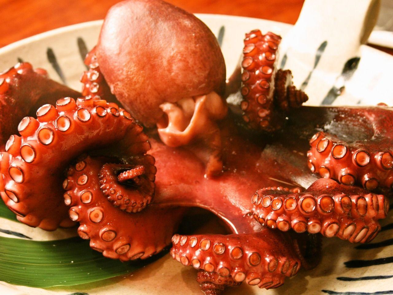日間賀島グルメを食べつくし!通年人気のタコは必ず食べて!
