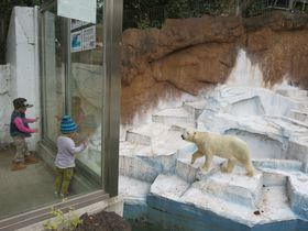 人気再上昇!大阪市天王寺動物園とその周辺スポット