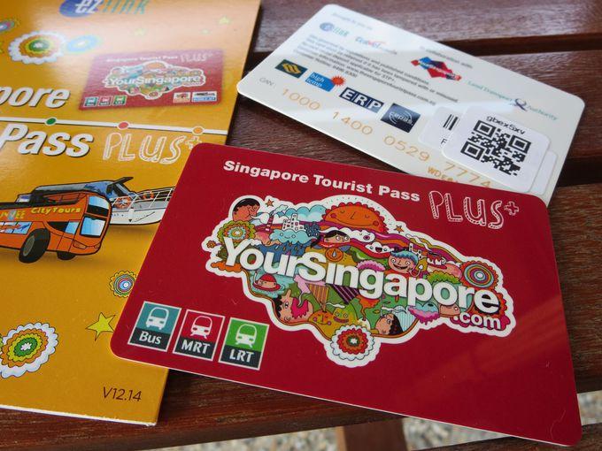 「シンガポール・ツーリスト・パス・プラス(STP+)」とは?