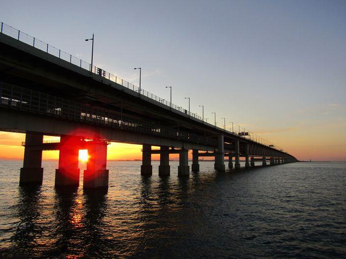 「りんくう海岸遊歩道」から連絡橋に落ちる夕陽が◎
