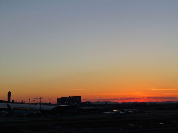「関空展望ホール スカイビュー」で夕陽を名残惜しむ