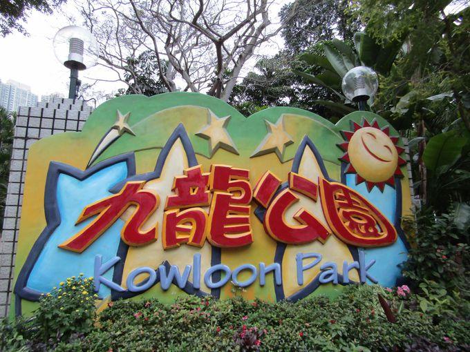香港の歴史を今に伝える!都会のオアシス九龍公園
