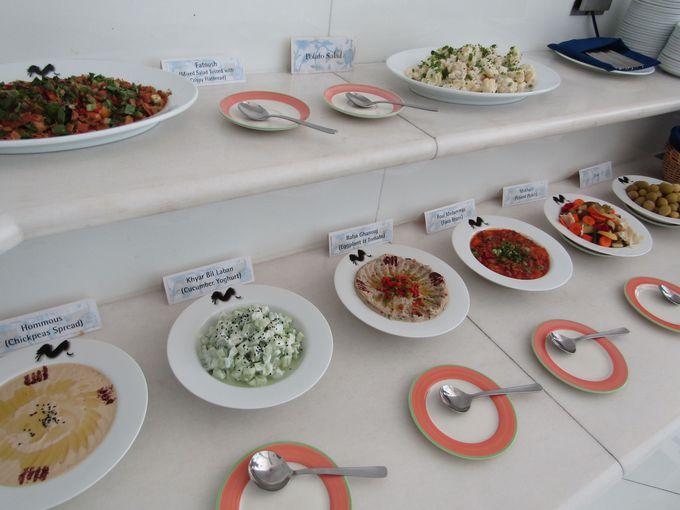 中東イスラム諸国のいろいろな料理が味わえる!