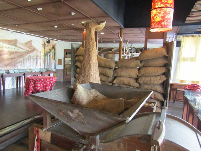 まずは池上の稲作文化と歴史について知っておきたい