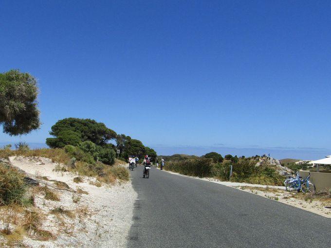まずは、サイクリングマップに沿って島の北側を目指せ!