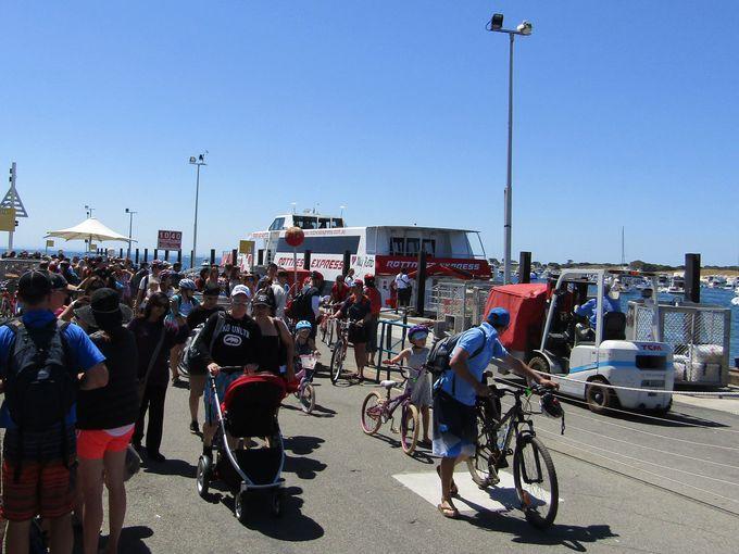 ロットネスト島へのアクセス&レンタルバイク受け取りは簡単・便利!