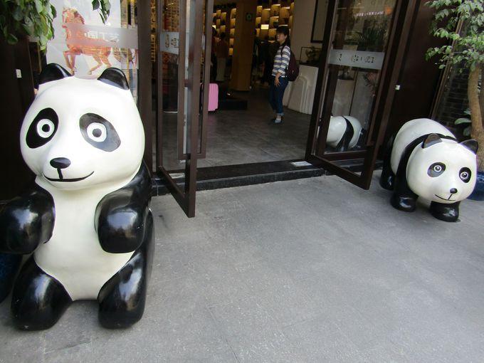 """観光地にも出没!?人寄せパンダ"""""""