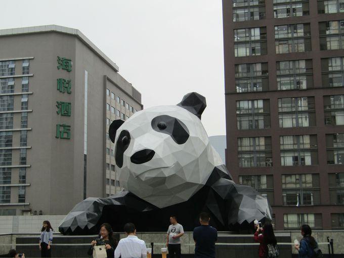 あなたなりのストーリーをイマジネーション!プロポーズパンダ&クライミングパンダ